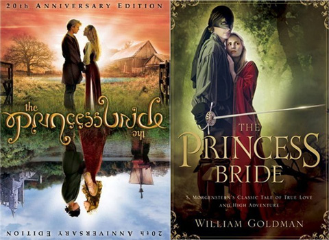 The Book Isn't Always Better – Part 2: The Princess Bride